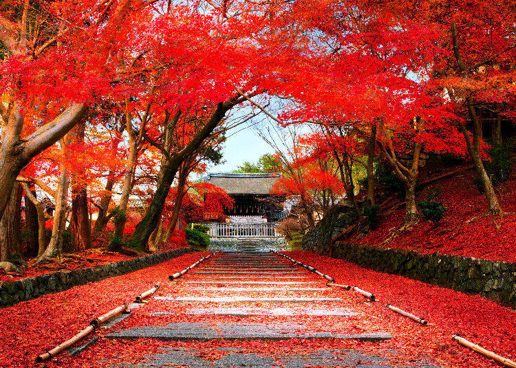 Bishamon-do Temple Autumn in Japan