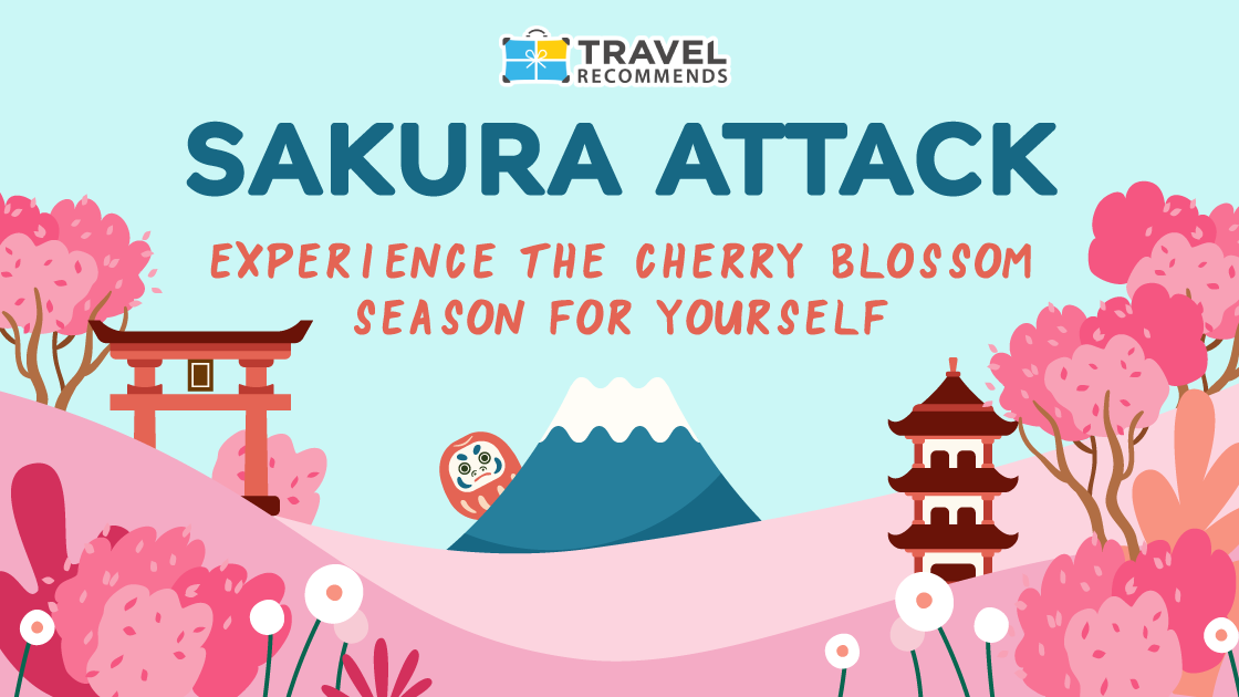 Sakura Attack - Cherry Blossom Guide from Travel Recommends